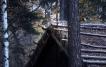 Viking house roof