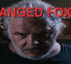 Deranged Foxhole Deduction