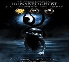 The NAKED GHOST