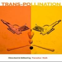 TRANS-POLLINATION