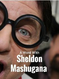 School of Idiots by Sheldon Mashugana