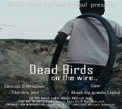 DEAD BIRDS ON THE WIRE