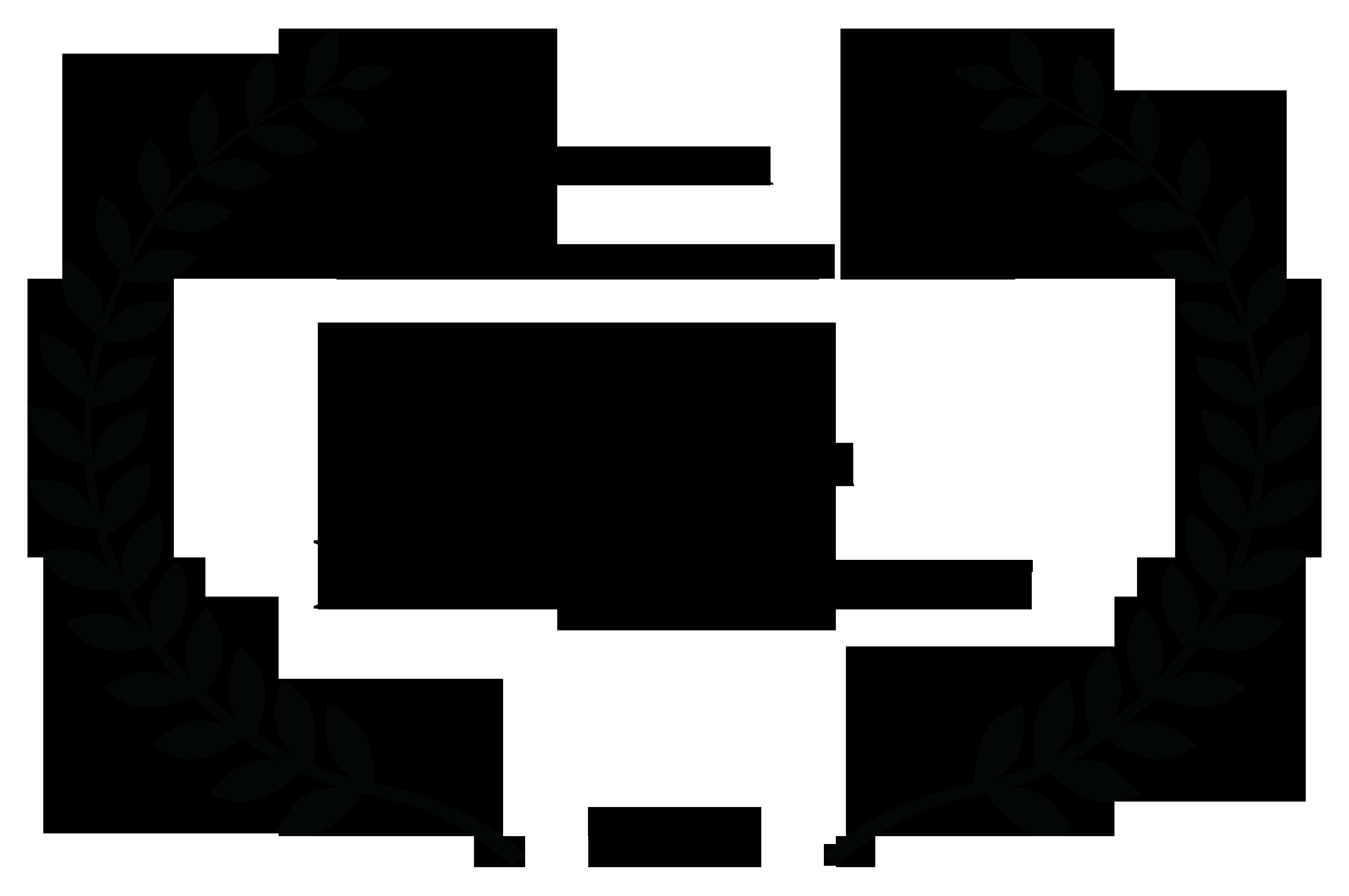 Best Istanbul Film Festival - Best VFX Winner