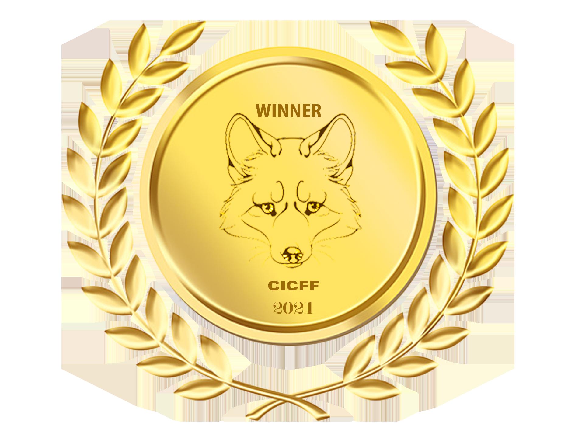 Calcutta International Film Festival - Best Crime Short