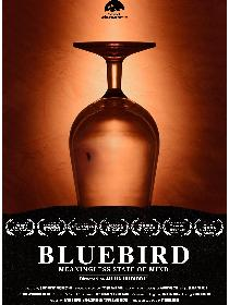 BlueBird. meaningless state of mind Poster