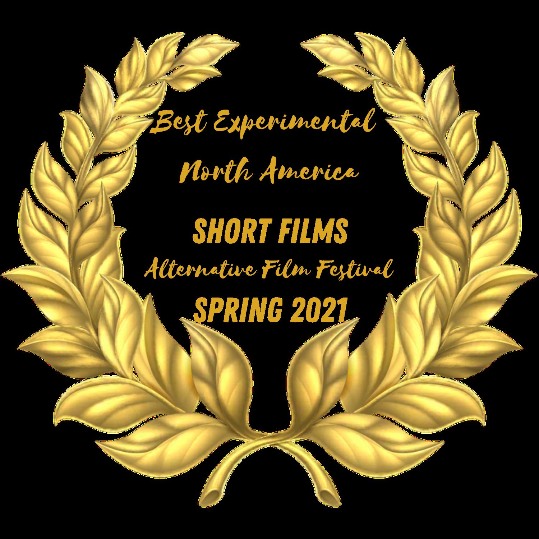 Winner - Alternative Film Festival - Canada - Best Experimental North America